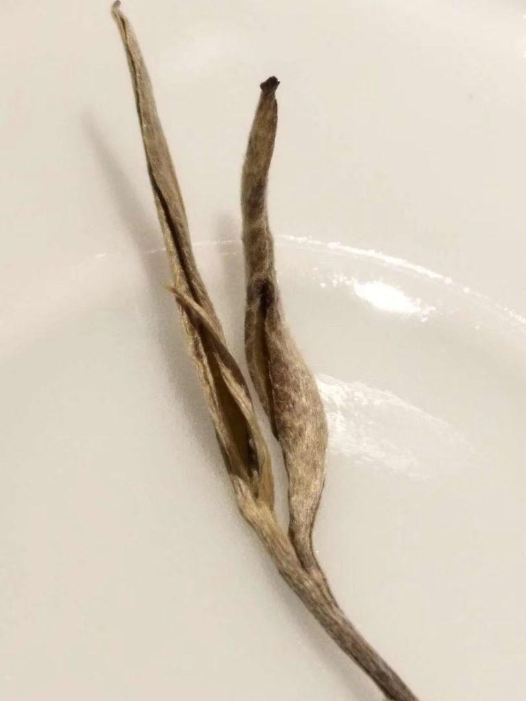 生普洱茶拉丝
